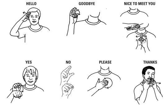 Basic American Sign Language ASL Signs